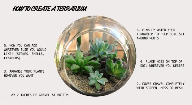 Terrarium Post